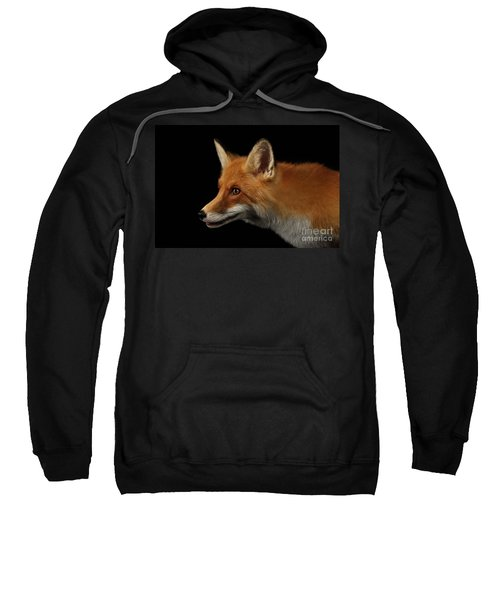 Closeup Portrait Of Red Fox In Profile Isolated On Black  Sweatshirt