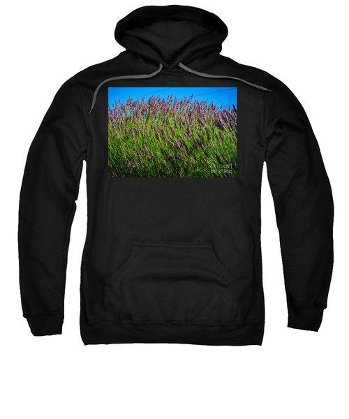 Country Lavender Iv Sweatshirt