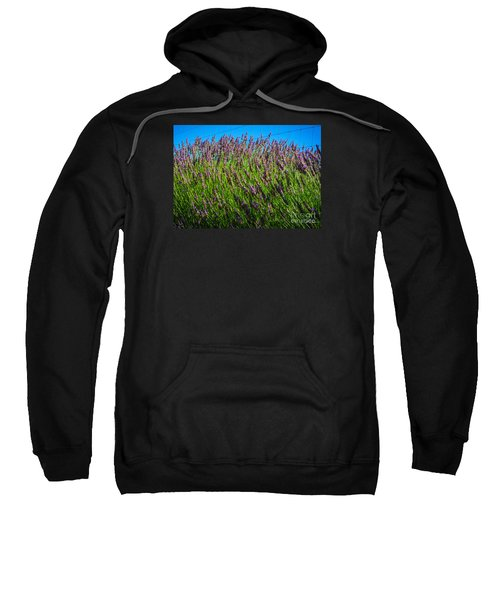 Country Lavender Iv Sweatshirt