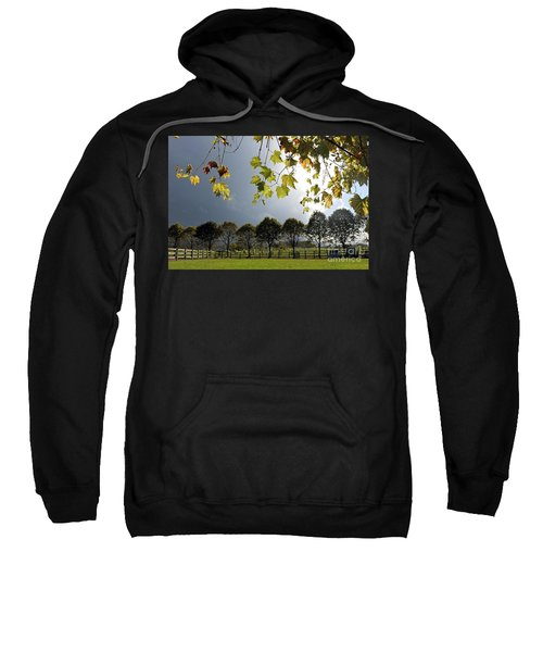 Denbies Vineyard Surrey Uk Sweatshirt