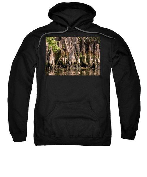 Heron And Cypress Knees Sweatshirt