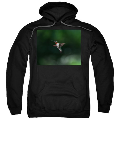 Male Ruby Throated Hummingbird Sweatshirt