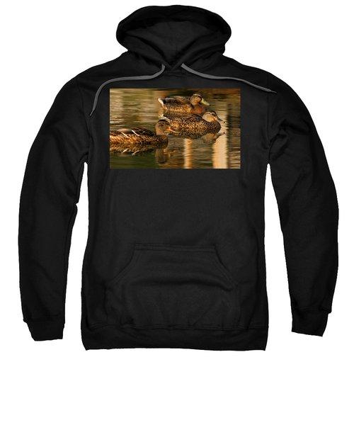 Mallards Swimming In The Water At Magic Hour Sweatshirt