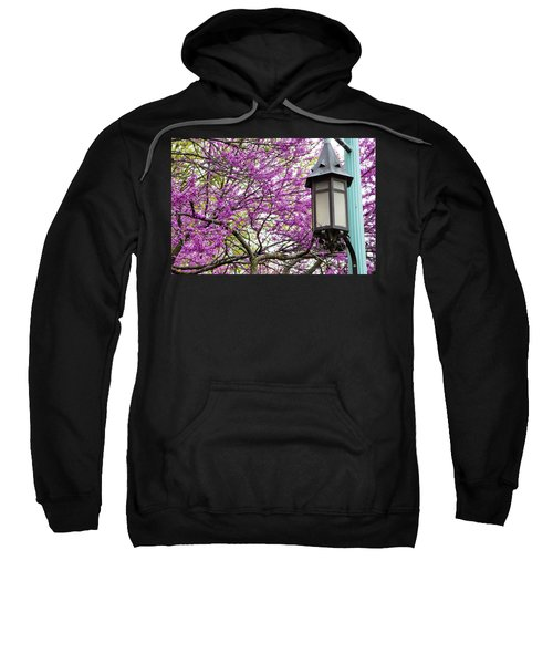 Michigan State University Spring 7 Sweatshirt by John McGraw
