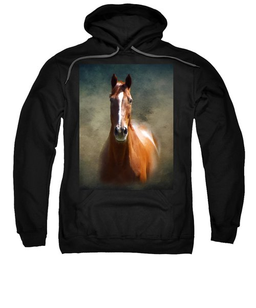 Misty In The Moonlight P D P Sweatshirt