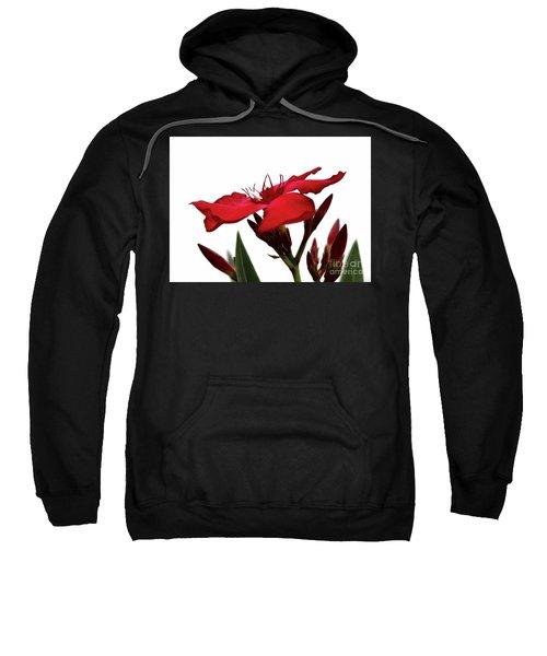 Oleander Blood-red Velvet 3 Sweatshirt