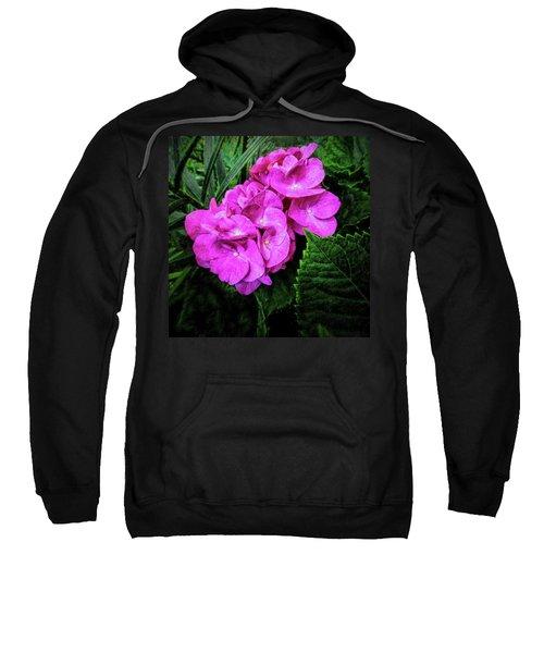 Painted Hydrangea Sweatshirt