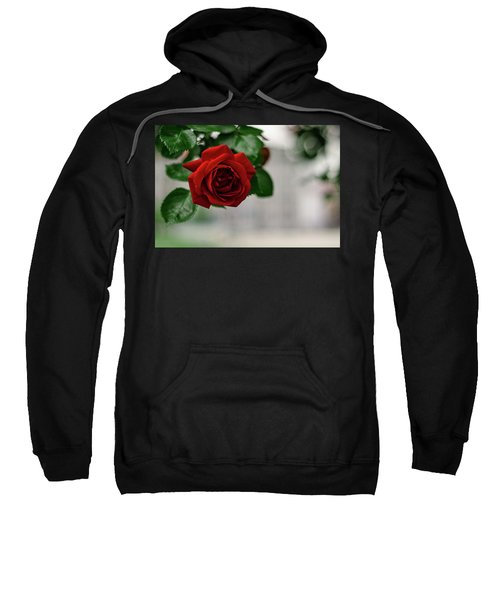 Roses In The City Park Sweatshirt
