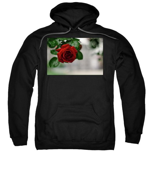 Roses In The City Park Sweatshirt