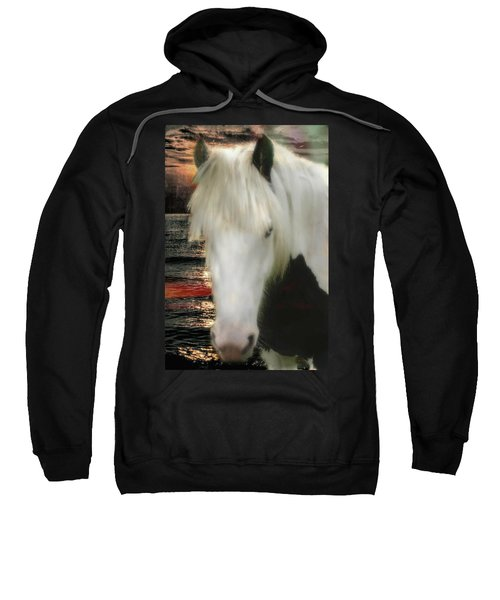 The Beautiful Face Of A Gypsy Vanner Horse Sweatshirt