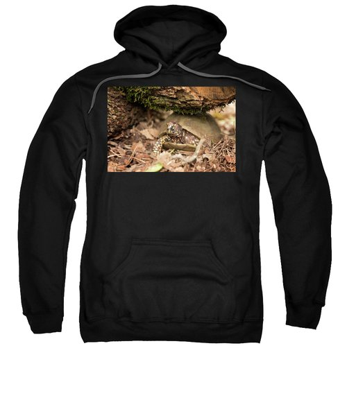 Turtle Town Sweatshirt