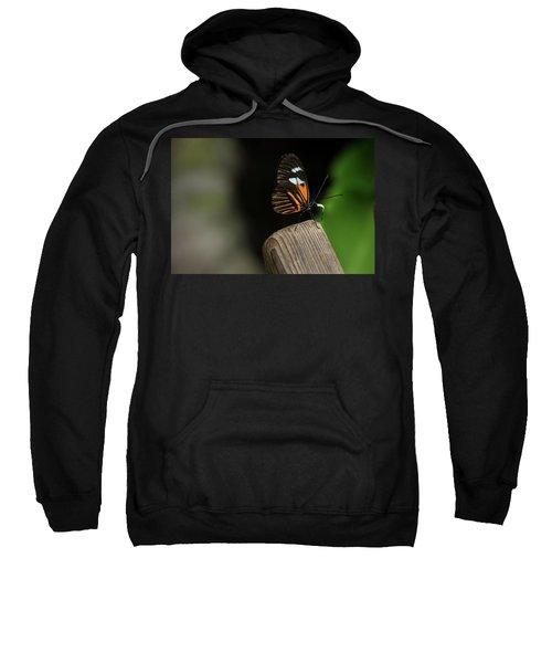 1378 Sweatshirt