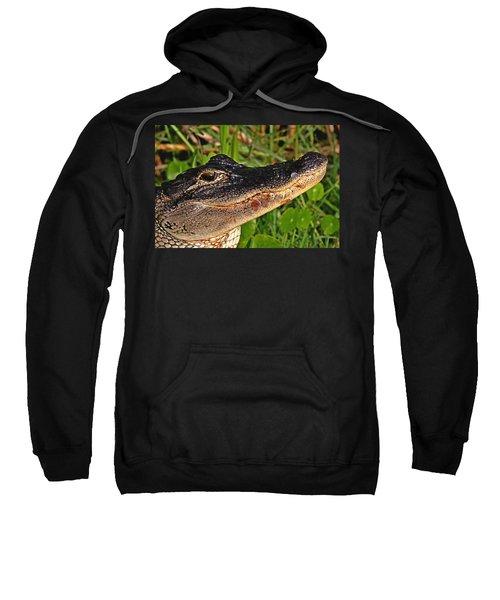 American Alligator Sweatshirt