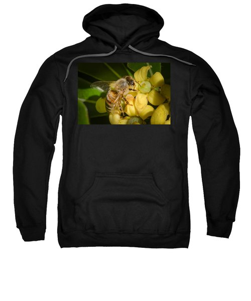 Sweatshirt featuring the photograph Bees Gathering From Pittosporum Flowers by Jim Thompson