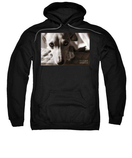 Heart You Italian Greyhound Sweatshirt