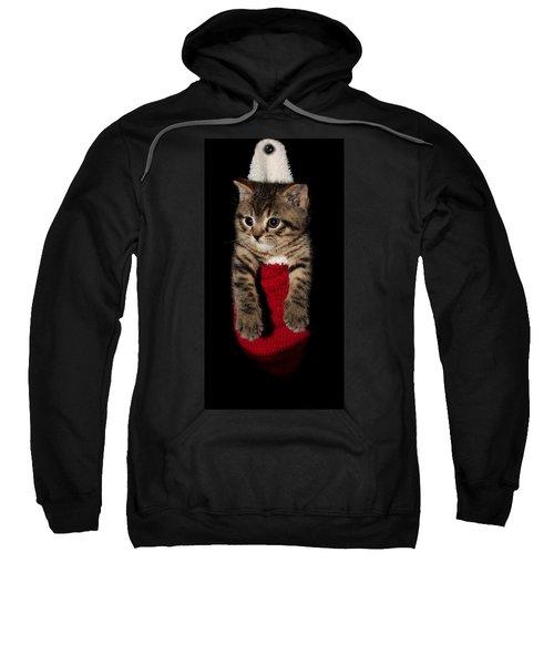 2010 Stocking Cat 2 Sweatshirt