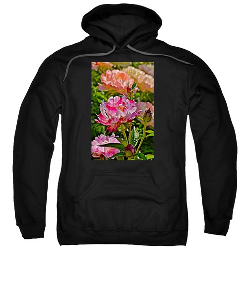 2015 Summer's Eve At The Garden Candy Stripe Peony Sweatshirt