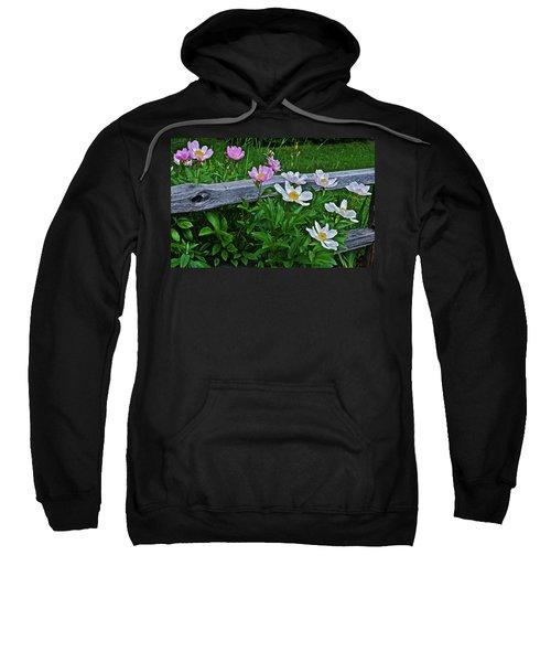 2015 Summer's Eve Neighborhood Garden Front Yard Peonies 2 Sweatshirt