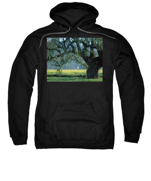 2b6319 Mustard In The Oaks Sonoma Ca Sweatshirt