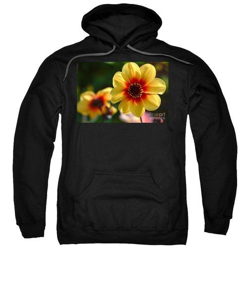 Autumn Flowers Sweatshirt