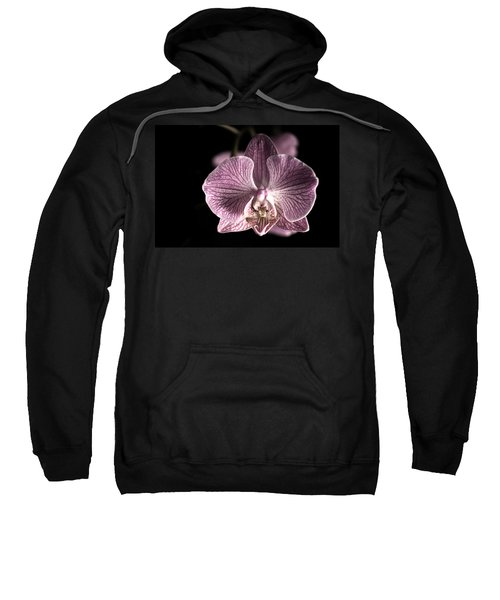 Close Up Shoot Of A Beautiful Orchid Blossom Sweatshirt