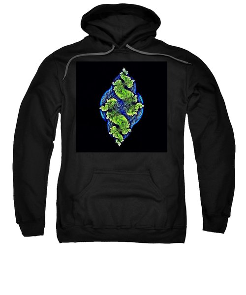 Tautological Fractals Sweatshirt