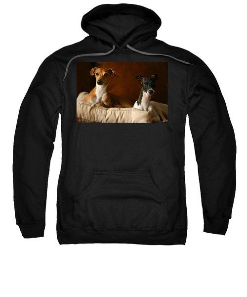 Italian Greyhounds Sweatshirt