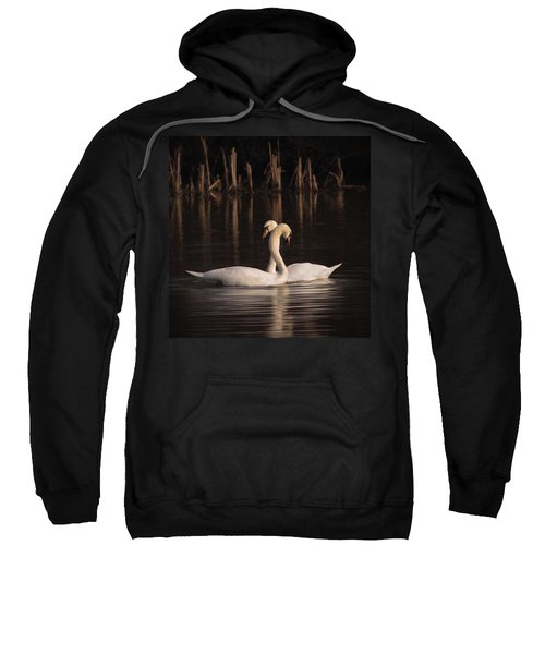 A Painting Of A Pair Of Mute Swans Sweatshirt by John Edwards