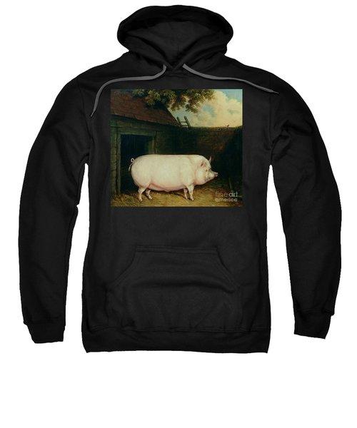 A Pig In Its Sty Sweatshirt