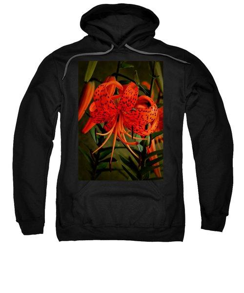 A Tiger Sweatshirt