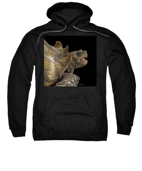 African Spurred Tortoise Sweatshirt