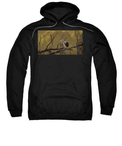 Against The Light Sweatshirt