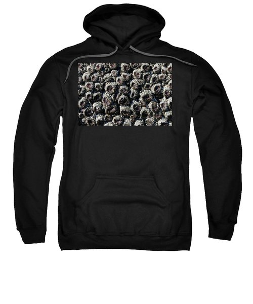Aggregating Anemones  Sweatshirt