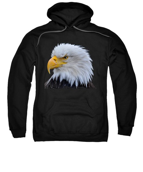 American Fierce Color Sweatshirt