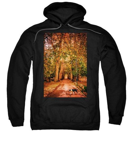 Alone Dog Sweatshirt