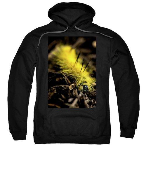 American Dagger Moth Caterpillar Sweatshirt