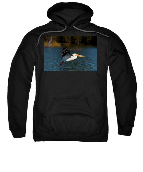 American White Pelican Sweatshirt