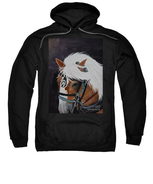 Amos - Haflinger - Horse Sweatshirt