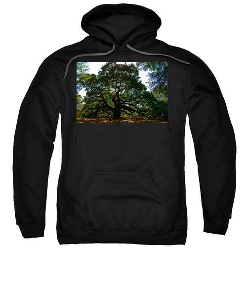 Angel Oak Tree 2004 Sweatshirt