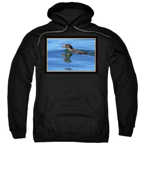 Angry Bird Sweatshirt by BYETPhotography