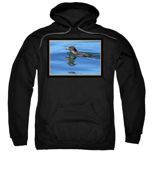 Angry Bird Sweatshirt