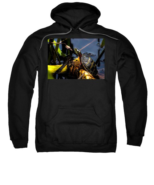 Ant Meets Turtle Sweatshirt