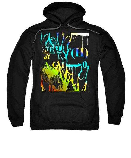 Anthro Equation Sweatshirt