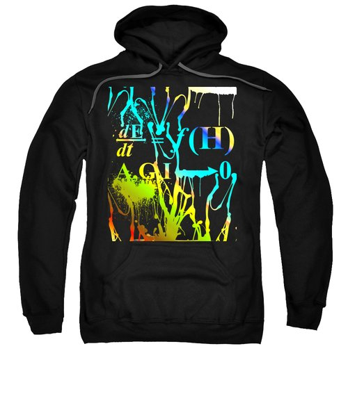 Anthro Equation Sweatshirt