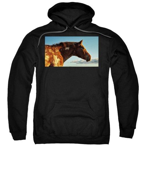 Appaloosa Mare Sweatshirt