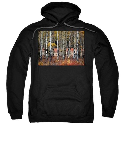 Appreciation II Sweatshirt