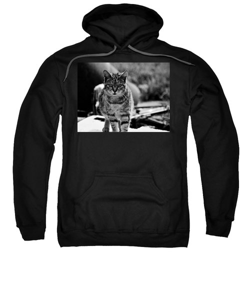 Approaching  Sweatshirt