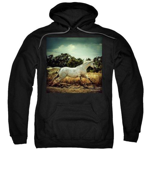 Arabian Horse Running In The Field Sweatshirt