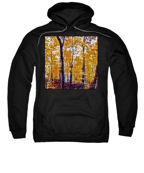 Autumn  Day In The Woods Sweatshirt