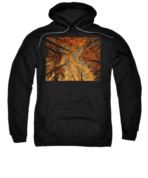 Autumn In The Forest Sweatshirt